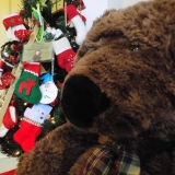 """Big Bear and Stockings"" by LifePath Hospice"