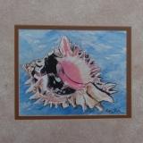 """Conch Shell"" by Robin J Fick"