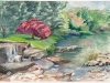 Garden by Anita Dillmann