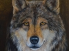Wolf Portrait by Nancy Lauby