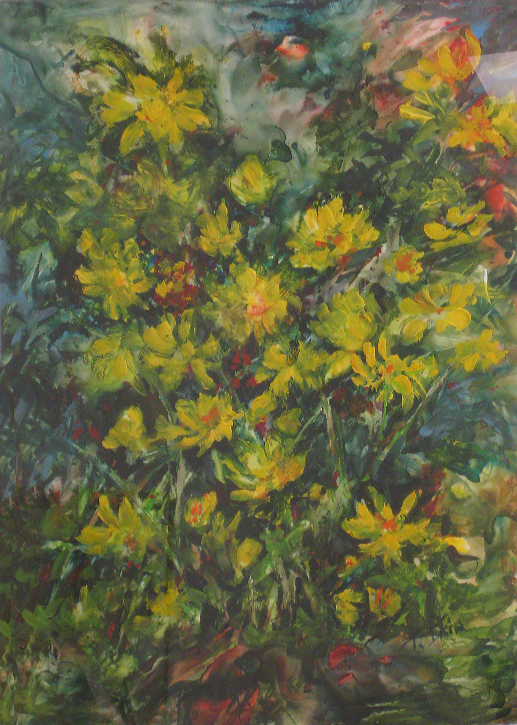 ikin-yellow-flowers