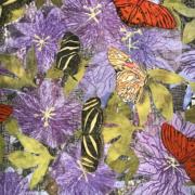 """Close up of Flowers & Butterflies"" by Susan Lumsden"